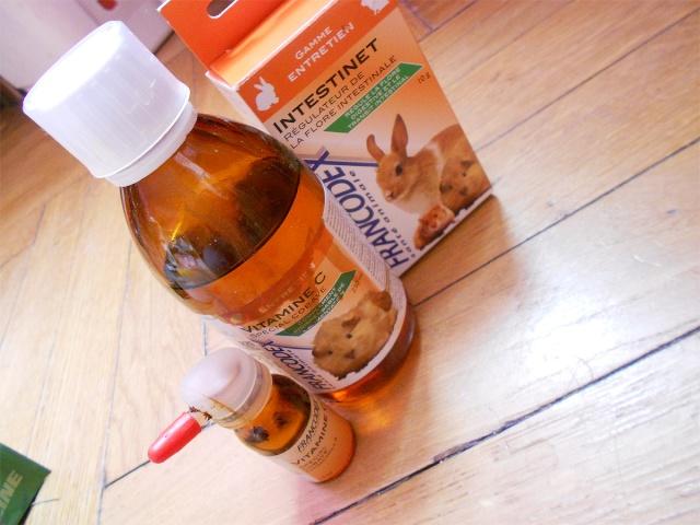 Le kit des essentiels et la trousse à pharmacie /!\ Dscn7627