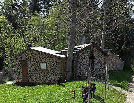 """Tourbière """"mouille"""" de La Vraconnaz (VD) [ou La Côte aux fées (NE-Val de Travers)] Chalet11"""