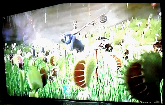Publicités vues à la télé Dionee11