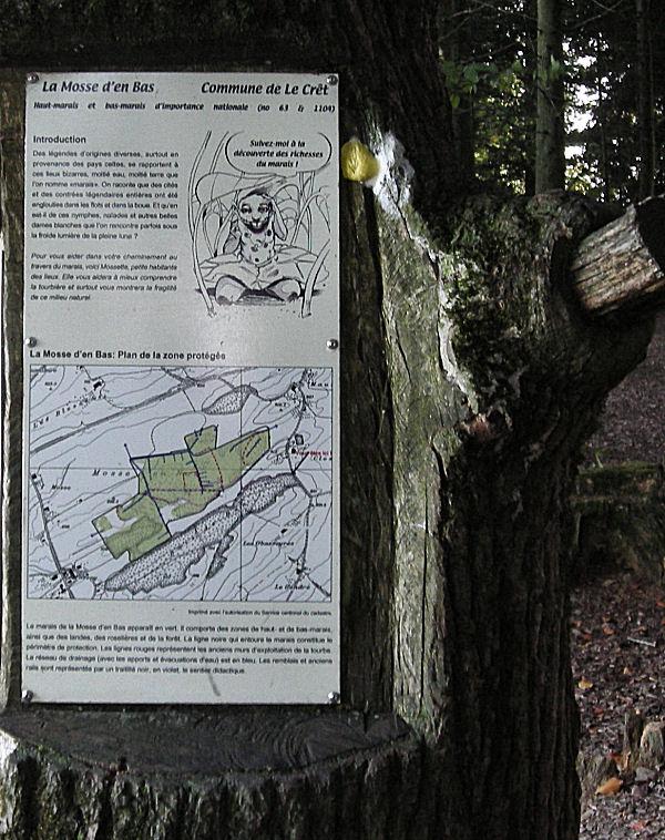 Tourbière de Le Crêt (Commune de la Verrerie - FR) Dscn0710