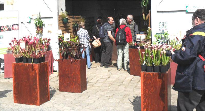 Fête des plantes, St Jean de Beauregard 91, printemps 2012 Jjl_en11