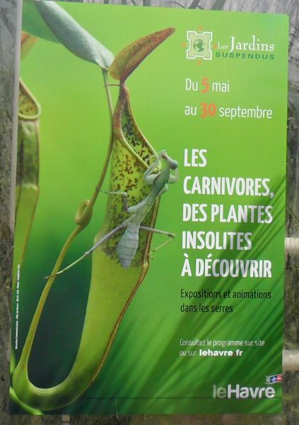 Les Jardins Suspendus du Havre juin 2012 Le_hav13