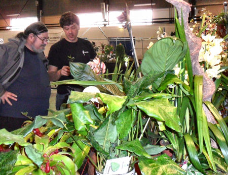 Exposition Vente en région parisienne, 19/20 novembre 2011, Charny 77  Stand_23