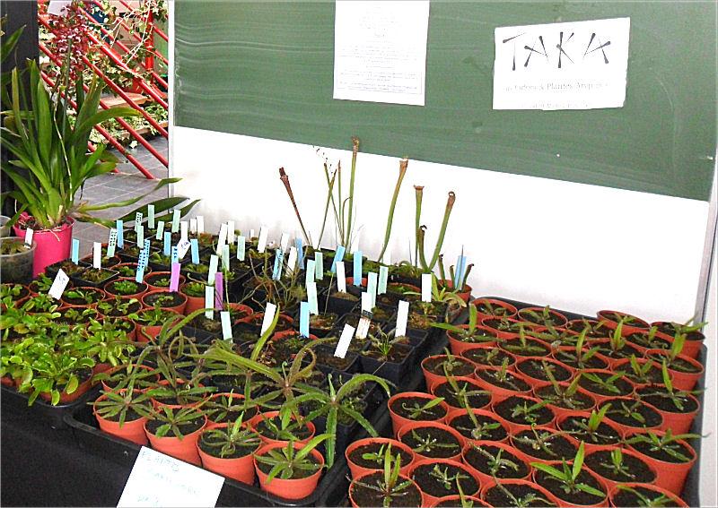 Expo Vente en région parisienne, 24 et 25 mars 2012, Cergy Pontoise 95  Stand_50