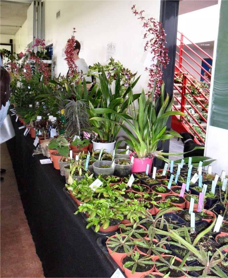 Expo Vente en région parisienne, 24 et 25 mars 2012, Cergy Pontoise 95  Stand_51