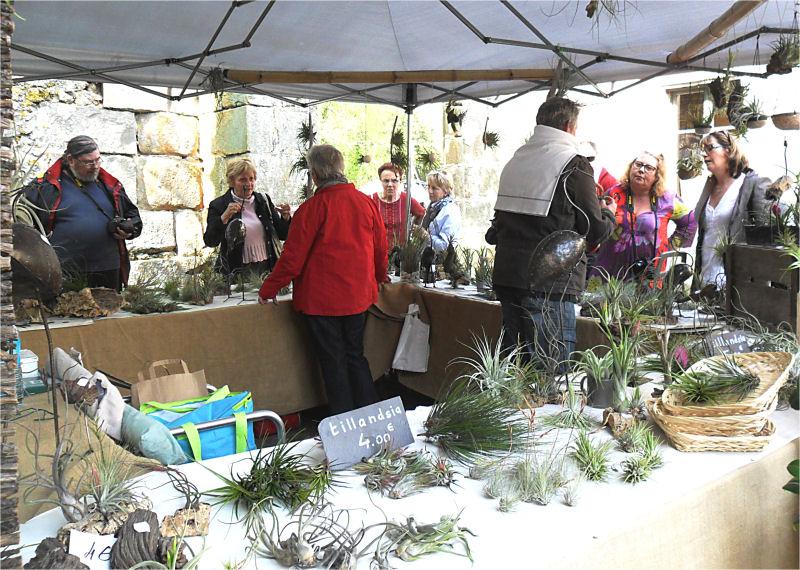 Fête des plantes, St Jean de Beauregard 91, printemps 2012 Tillan11