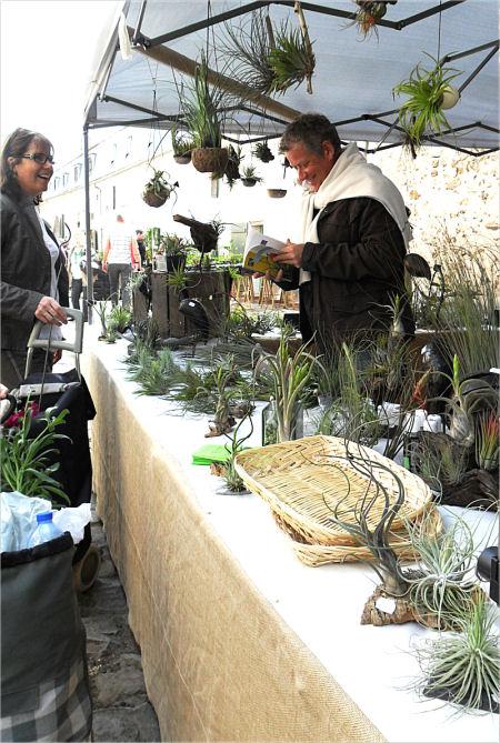 Fête des plantes, St Jean de Beauregard 91, printemps 2012 Tillan12