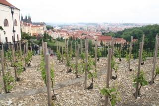Prague , sur les traces de Mamina . Img_0515