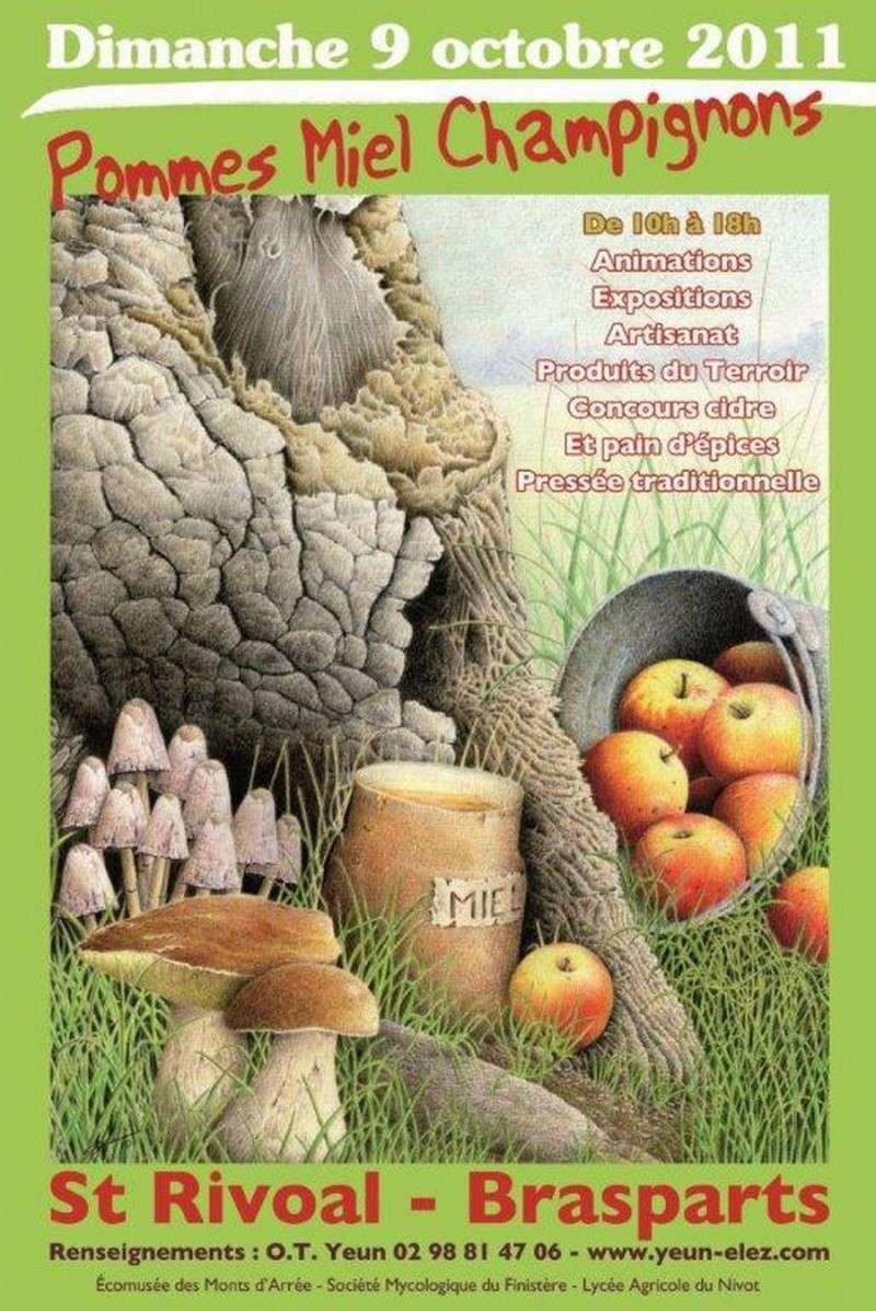 Fête de la pomme, du miel et des champignons 2011 Affich11