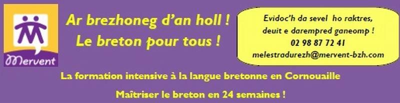 La formation intensive au breton en Cornouaille  Image010