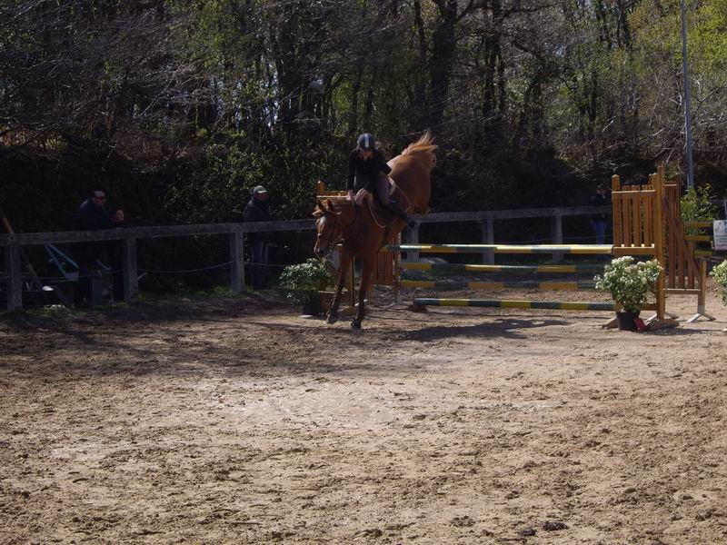 Concours de saut d'obstacles à Brasparts - images Imgp9810