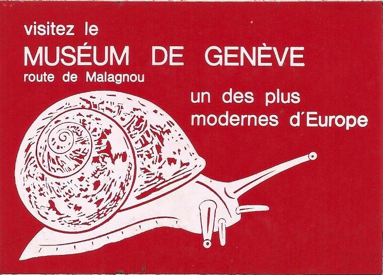 MUSEUM de GENEVE Image031