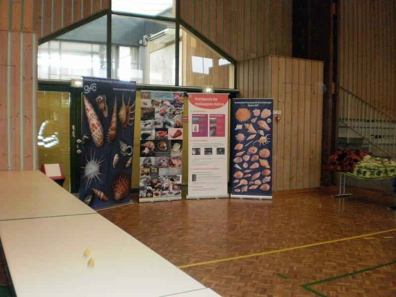 2011 Bourse internationale Ottmarsheim - 17 & 18 Septembre - AFC Région EST P9160011