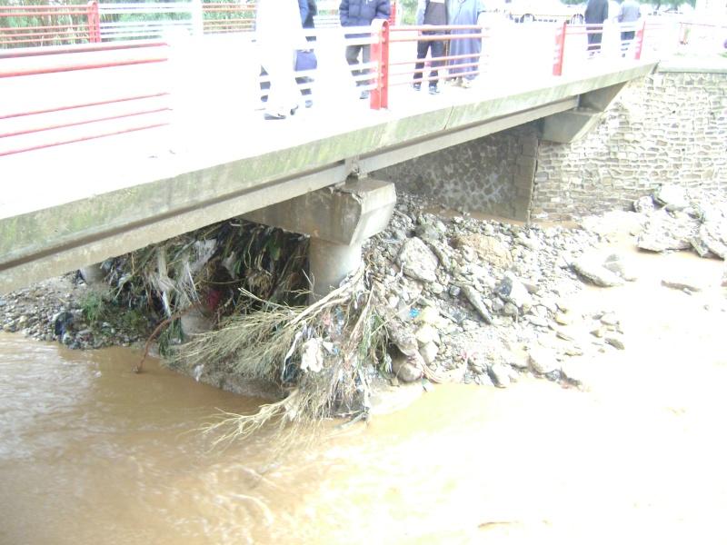 Pluies torrentielles  à SAIDA Dsc03110