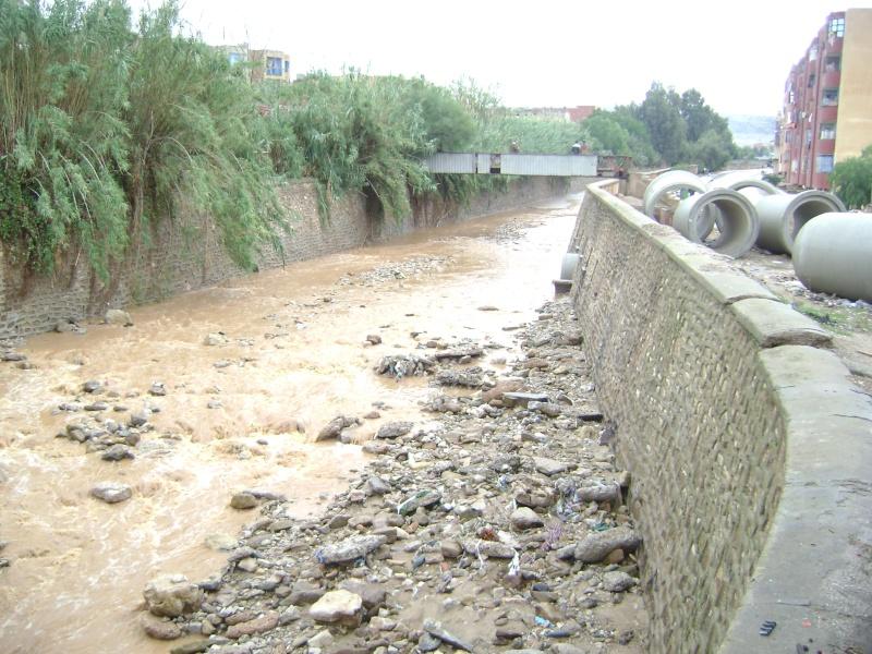 Pluies torrentielles  à SAIDA Dsc03111