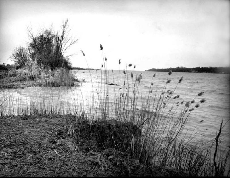 Ambès, entre Garonne et Gironde 2e4ba910