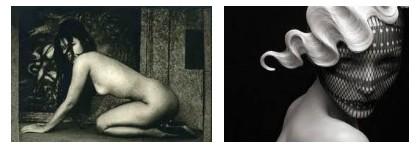 Juxtapositions oulipiennes d'images - Poésie des contrastes _confr10