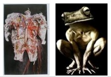 Juxtapositions oulipiennes d'images - Poésie des contrastes _pasbe10