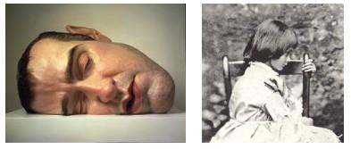 Juxtapositions oulipiennes d'images - Poésie des contrastes Alice10