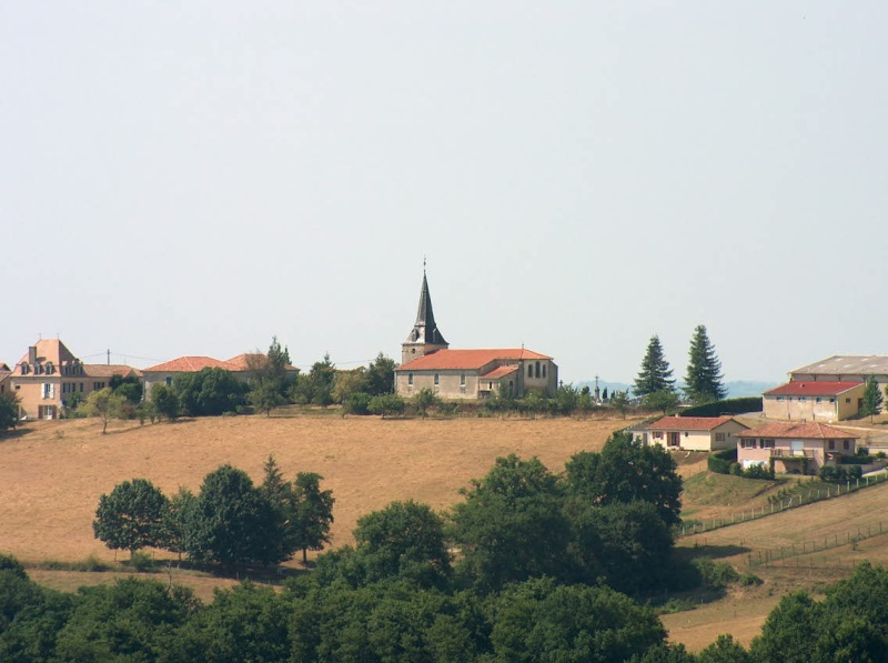 Bonnut près d'Orthez Bonnut11