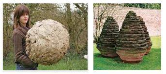 Juxtapositions oulipiennes d'images - Poésie des contrastes Bowlin10