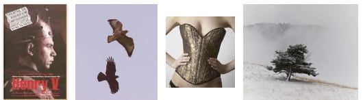 Juxtapositions oulipiennes d'images - Poésie des contrastes Chassz10