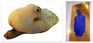 Juxtapositions oulipiennes d'images - Poésie des contrastes Craque11