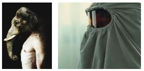 Juxtapositions oulipiennes d'images - Poésie des contrastes Elepha10