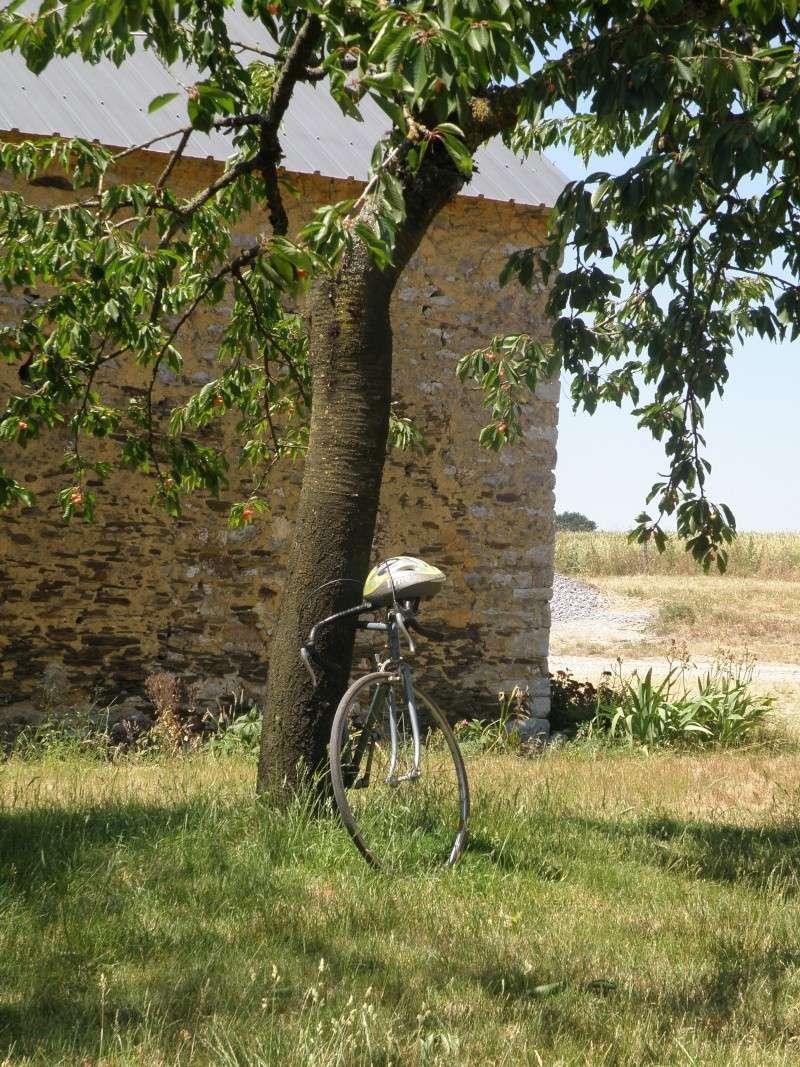 Juin 2011 le temps des cerises et des promenades à bicyclettes Grandv27