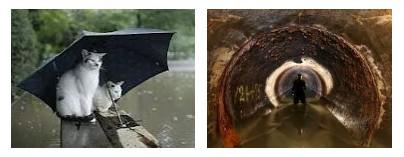 Juxtapositions oulipiennes d'images - Poésie des contrastes Inonda10