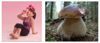 Juxtapositions oulipiennes d'images - Poésie des contrastes Lebole10