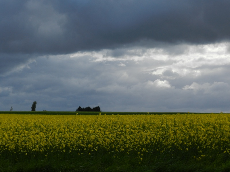 Ciels changeants (fin avril 2012) Legran79