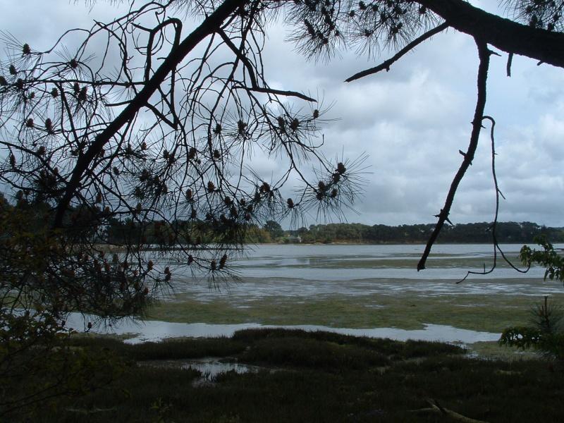 Ria d'Etel - Pâques 2005 Locoal20