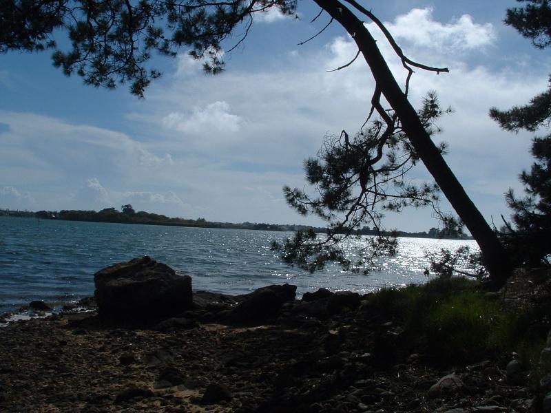 Ria d'Etel - Pâques 2005 Locoal25