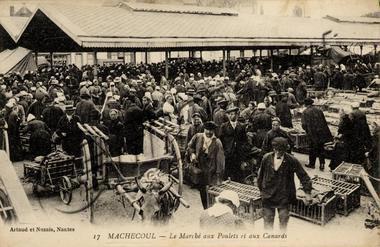Machecoul vers Nantes chez Gilles de Rais Marcha10
