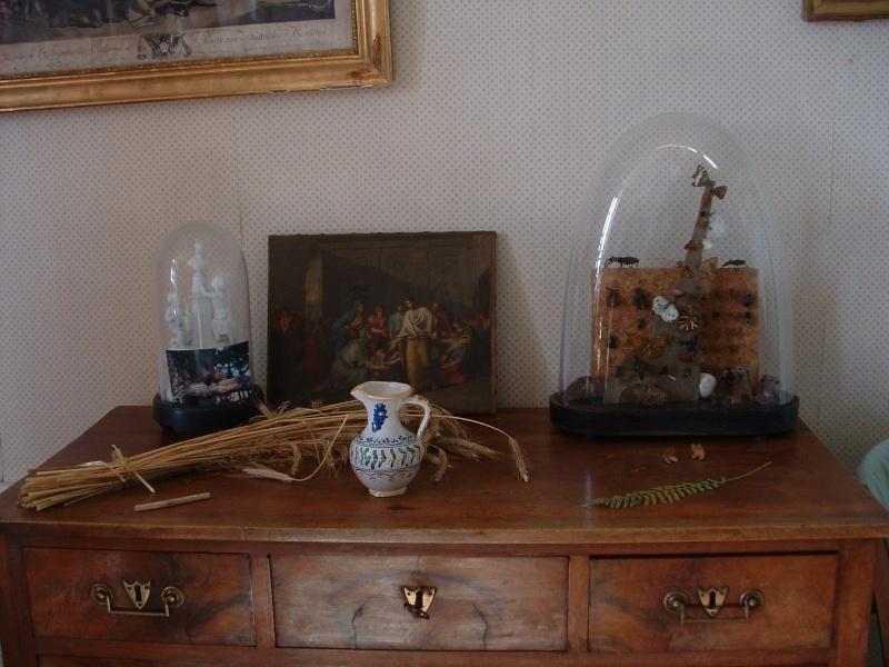 mon cabinet de curiosité ardèchois Marcla10