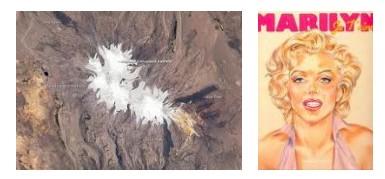 Juxtapositions oulipiennes d'images - Poésie des contrastes Marily10