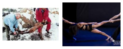 Juxtapositions oulipiennes d'images - Poésie des contrastes Otzida10