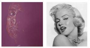 Juxtapositions oulipiennes d'images - Poésie des contrastes Regard11