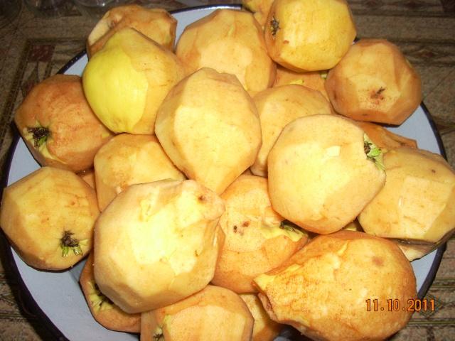 Dulceţuri tradiţionale, siropuri, gemuri, compot pt.iarna şi fructe confiate. Apolon27