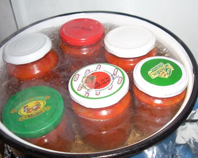 Muraturi in otet si in saramura-alte preparate(conserve din legume) pentru iarna Bors_017