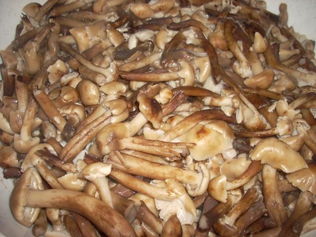 Muraturi in otet si in saramura-alte preparate(conserve din legume) pentru iarna Bureti12