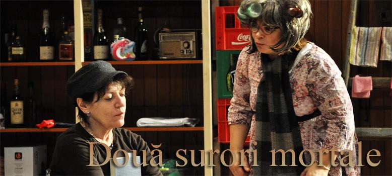 """Festivalul de teatru  """"Dar"""" Iasi Clip_823"""