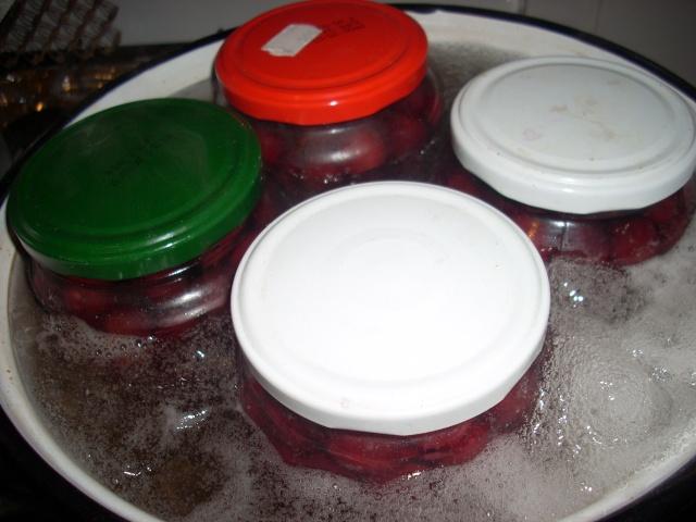 Dulceţuri tradiţionale, siropuri, gemuri, compot pt.iarna şi fructe confiate. Compot14