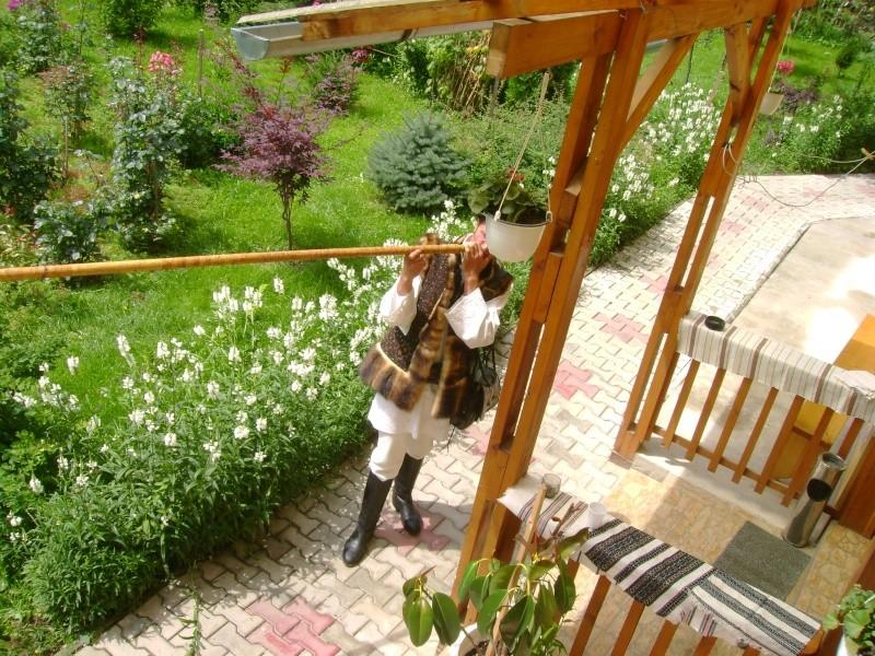 Tabăra de creaţie şi recreaţie de la Câmpulung Moldovenesc-29 iulie/06 august 2011 Dsc00131