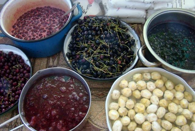 Dulceţuri tradiţionale, siropuri, gemuri, compot pt.iarna şi fructe confiate. Dsc04717