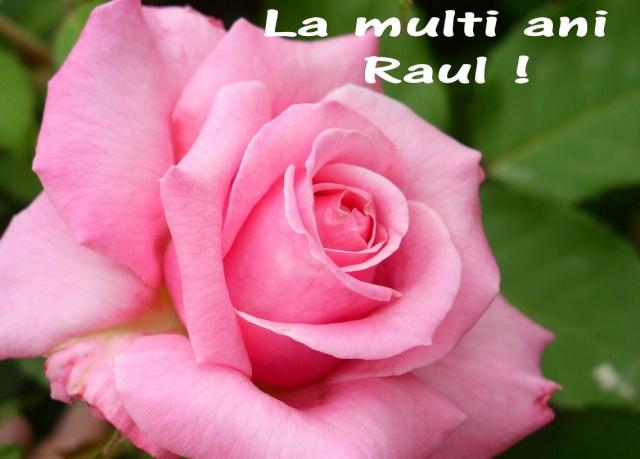 Ovidiu Raul Vasiliu -Oglinda Raul_j10
