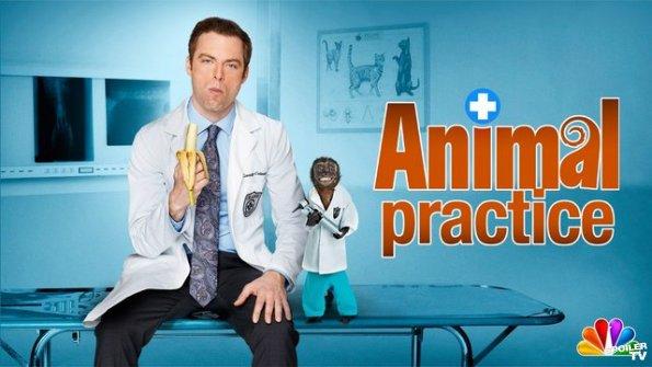 Série - Animal Practice Animal10