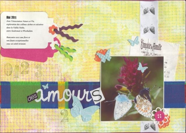 Inspiration janvier- bravo Zélie - Page 3 Des-am12