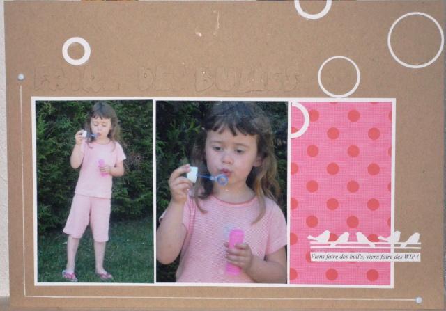 Inspiration n°3 mars 2012 - Bravo Sandrinette - Page 3 Dsc_0010